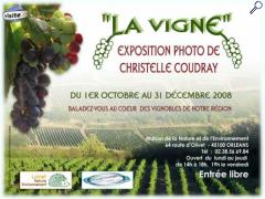"photo de ""La Vigne"""