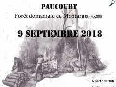picture of Paucourt - Fête de la Forêt 2018